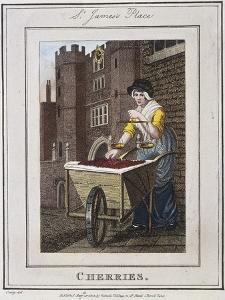 Cherries, Cries of London, 1804 by William Marshall Craig