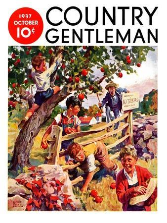 """Stealing Apples,"" Country Gentleman Cover, October 1, 1937"