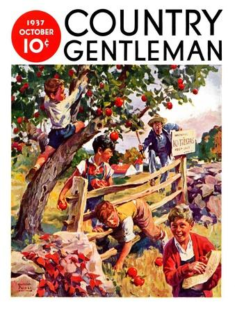 """""""Stealing Apples,"""" Country Gentleman Cover, October 1, 1937"""