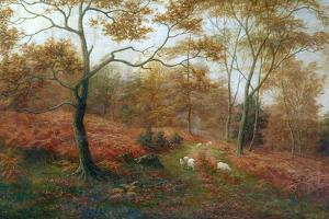 Bolton Woods, Yorkshire by William Mellor