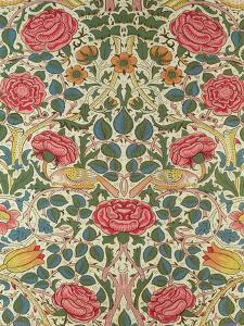 Rose, 1883 by William Morris