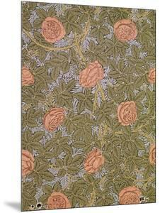 """Rose - 93"" Wallpaper Design by William Morris"
