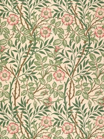 sweet Briar' Design for Wallpaper, Printed by John Henry Dearle (1860-1932) 1917 by William Morris