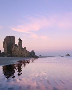 Big Sur I by William Neill