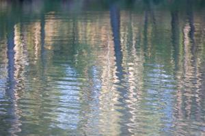 Sierra Reflections II by William Neill