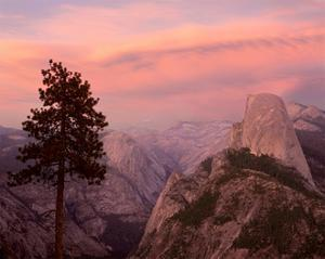 Yosemite Sunset by William Neill