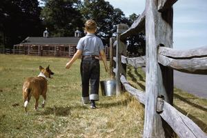 Boy and His Dog Walking Along a Fence by William P. Gottlieb