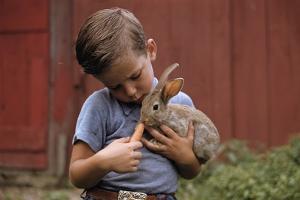Boy Feeding a Rabbit by William P. Gottlieb
