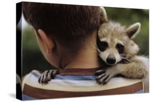 Boy Holding a Raccoon by William P. Gottlieb