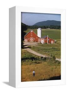 Boy Standing in Field Near Red Barn by William P. Gottlieb