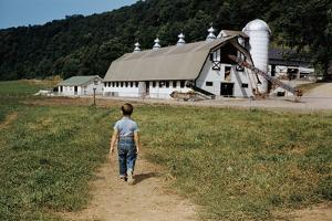 Boy Walking Towards a Barn by William P. Gottlieb