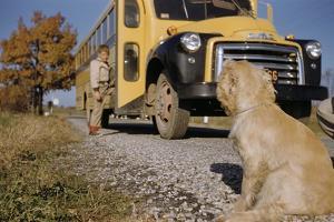 Faithful Dog Watching Boy Enter School Bus by William P. Gottlieb