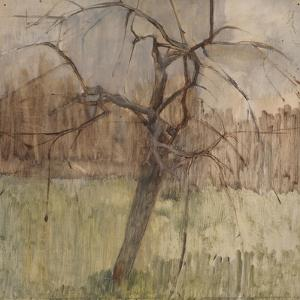 Apple Tree, 1963 by William Packer
