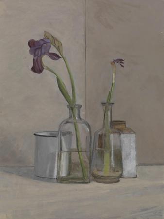 Irises White Cans, 2006