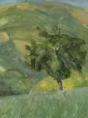 Tree on Hill, 2013