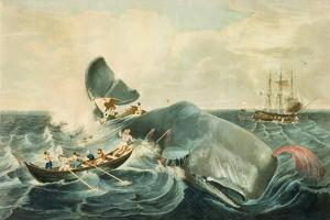 Capturing a Sperm Whale, Engraved by J. Hill, Published 1835 by William Page