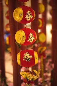 Drums and Fish Chinese New Year Decorations, Beijing, China by William Perry