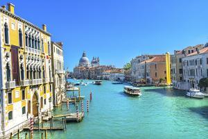 Grand Canal Santa Maria della Salute Church from Ponte Academia Bridge, Venice, Italy by William Perry