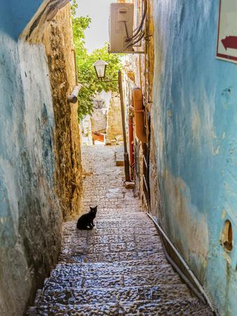 Old Stone Street with Black Cat, Safed, Tsefat, Israel