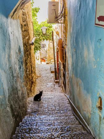 Old Stone Street with Black Cat, Safed, Tsefat, Israel