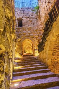Qalat ar-Rabid Ancient Arabic Fortress Castle, Ajlun, Jordan. by William Perry