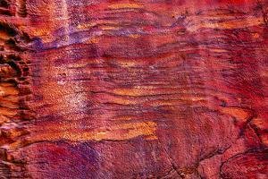 Rose Red Rock Tomb Facade, Street of Facades, Petra, Jordan by William Perry