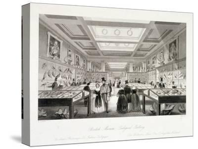 The Zoological Gallery, British Museum, Holborn, London, C1850