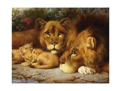 A Royal Family of Lions