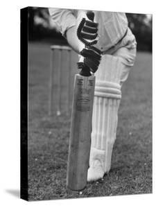 Cricket Bat by William Sumits