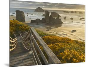 A Stairway Leads to the Beach in Bandon, Oregon, USA by William Sutton