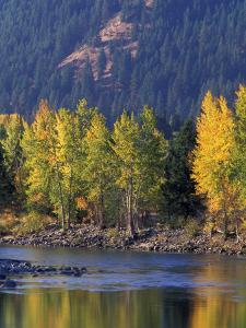 Autumn Color on the Methow River, Washington, USA by William Sutton