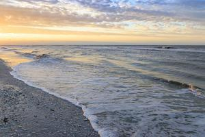 Beach at dawn, Sanibel Island, Florida. by William Sutton