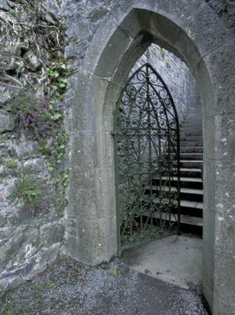 Castle Doorway, County Mayo, Ireland by William Sutton
