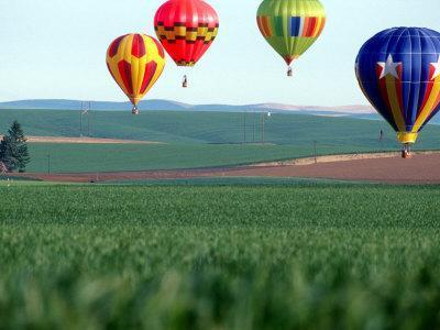 Colorful Hot Air Balloons Float over a Wheat Field in Walla Walla, Washington, USA