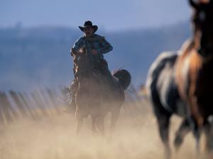 Cowboy Riding Horseback, Oregon, USA by William Sutton