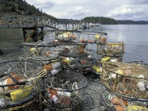 Crab Pots on Shore of Cornet Bay, Whidbey Island, Washington, USA by William Sutton