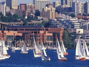 Sailboat Race on Lake Union, Seattle, Washington, USA by William Sutton