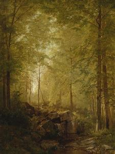 In the Woods, 1872 by William Trost Richards