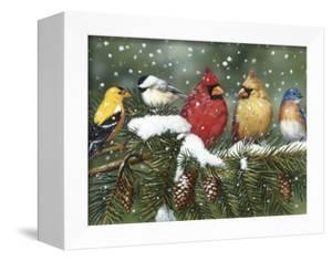 Backyard Birds on Snowy Branch by William Vanderdasson