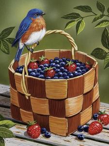 Blueberry Basket by William Vanderdasson