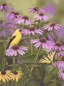Butterfly and Finch Amongst Flowers by William Vanderdasson