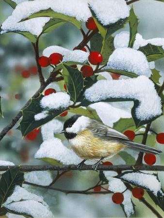 Chickadees and Holly Branch by William Vanderdasson
