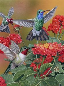 Hummingbirds and Flowers by William Vanderdasson