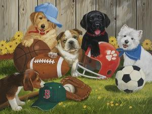 Let's Play Ball by William Vanderdasson