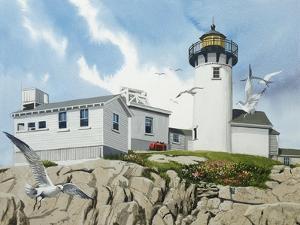Lighthouse by William Vanderdasson