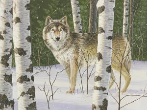 Lone Wolf by William Vanderdasson