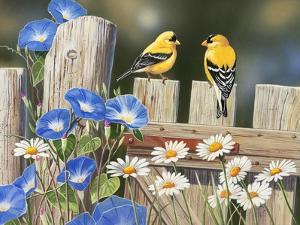 Morning Glories and Finches by William Vanderdasson