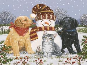 Snowboy with Little Friends by William Vanderdasson