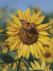 Sunflower and Butterflies by William Vanderdasson