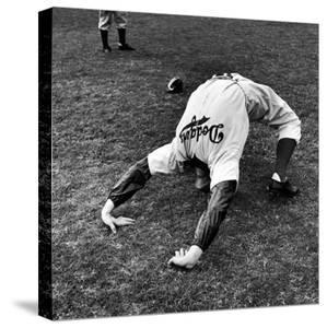 Brooklyn Dodgers Pitcher Ed Albosta Doing Stretching Exercise During Spring Training by William Vandivert